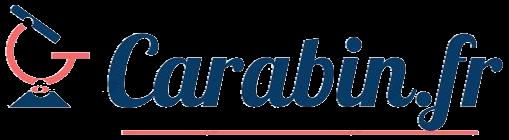 Carabin, blog études, emploi et formation
